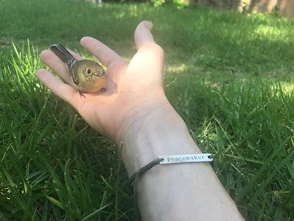 peacemaker_w_bird.jpg