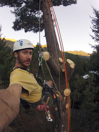 Tree climbing in El Bolson, Patagonia, Argentina