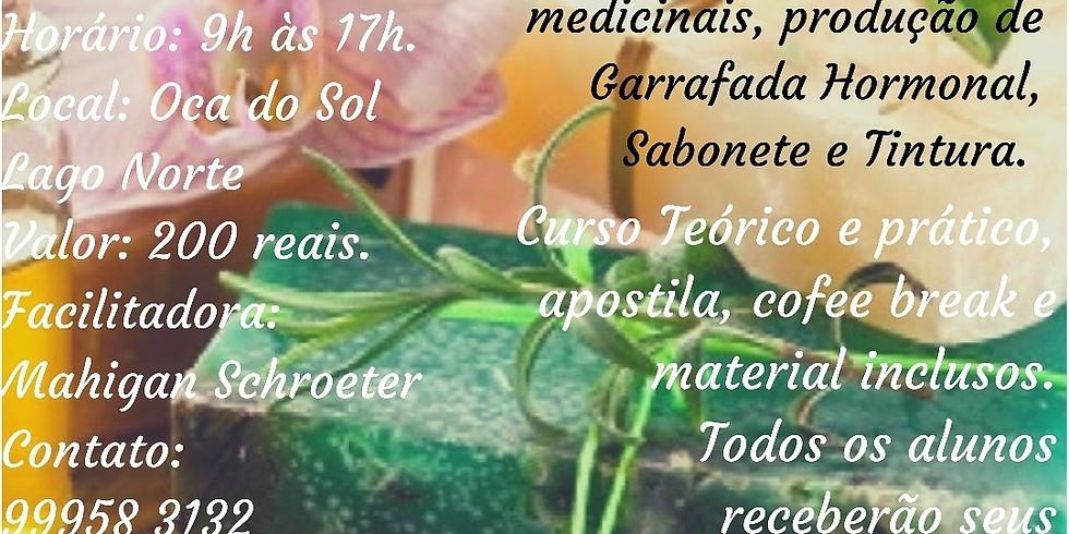 Curso de Ervas - Farmácia Caseira