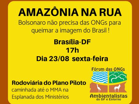 """Instituto Oca do Sol apoia o evento """"Amazônia na Rua"""""""