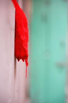 Red scarf on green 2.jpg
