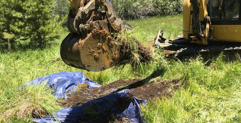 Upper Truckee Marsh Restoration -13.jpg