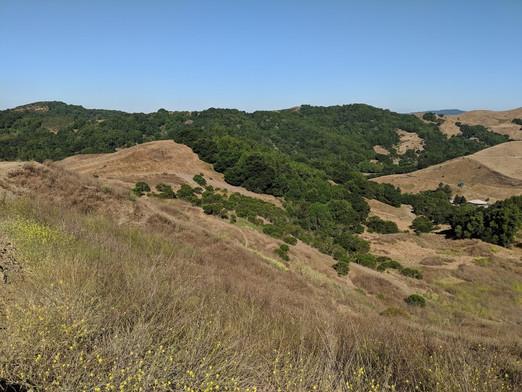 Ranch Trails