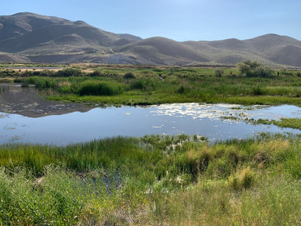 Steamboat Creek, Bella Vista Subdivision