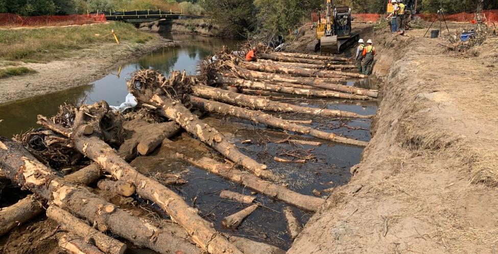 Upper Truckee Marsh Restoration -3.jpg