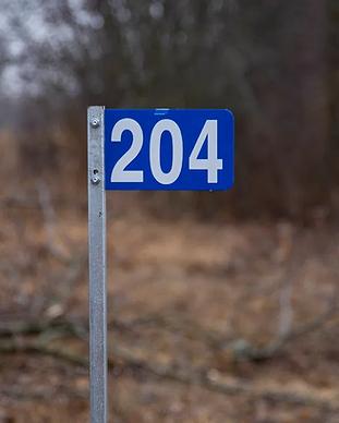 DSC2127.webp