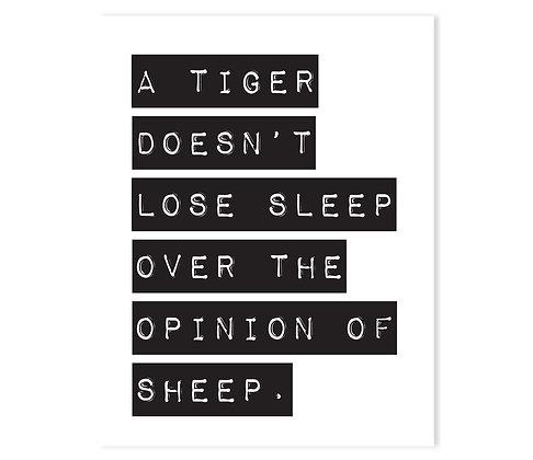 Tiger: Set of 3