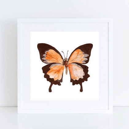 Watercolour Butterfly: Set of 2