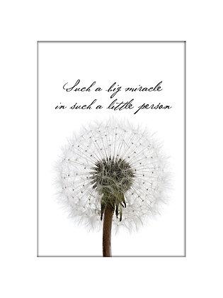 Unframed: Dandelion