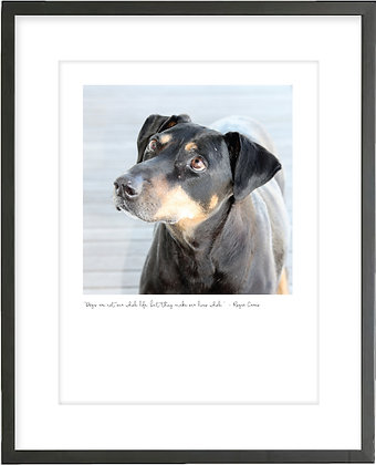 Personalised Print - Dog