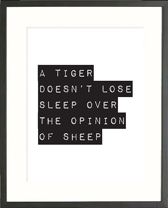 A Tiger Doesn't Lose Sleep