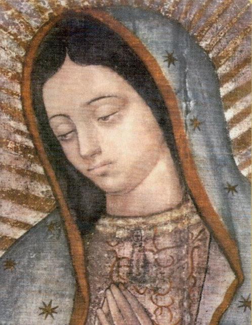 Veladora Virgen de Guadalupe (Etiqueta)