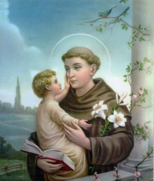 Veladora St. Anthony (Etiqueta)