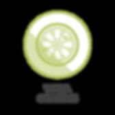 Wheel Coating Icon