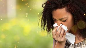 Allergic Rhinitis, Hay Fever, Environmental allergies - What is it?