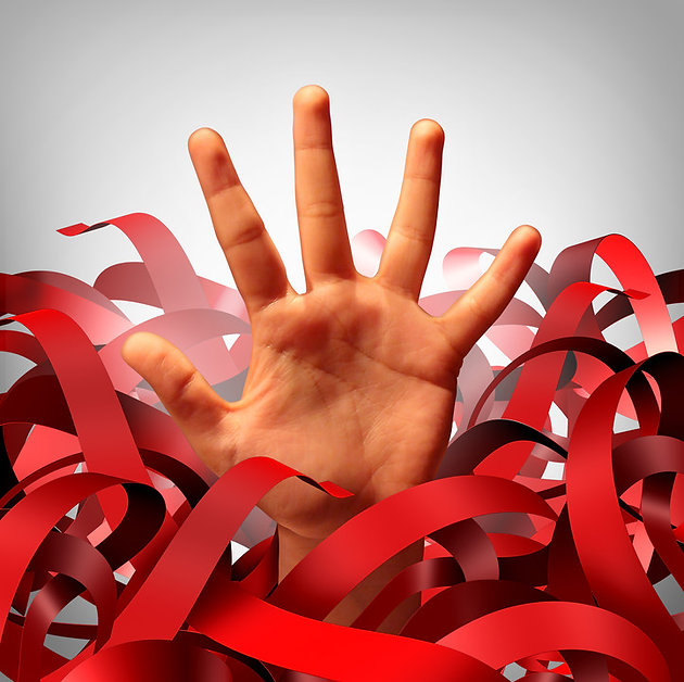 Technology Accelerators - Fighting the Red Tape (Guest Blogger)