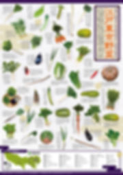 江戸東京野菜ポスター