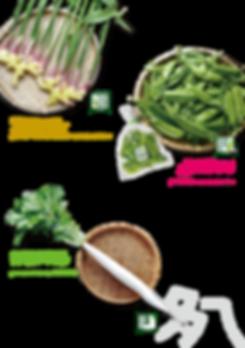八王子の江戸東京野菜