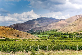Inside Armenia's Up and Coming Wine Industry