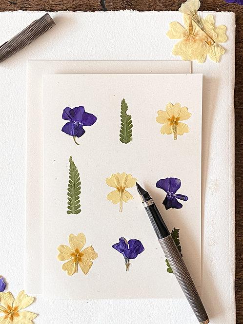 Herbarium Card IX