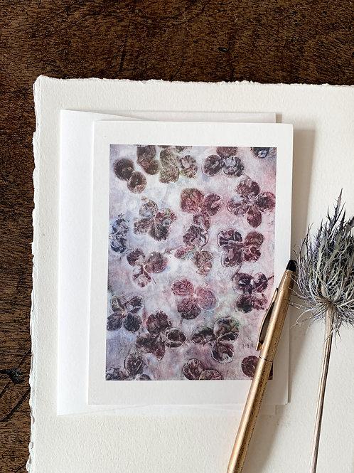 Hortensienblätter I 'Damson Purple'