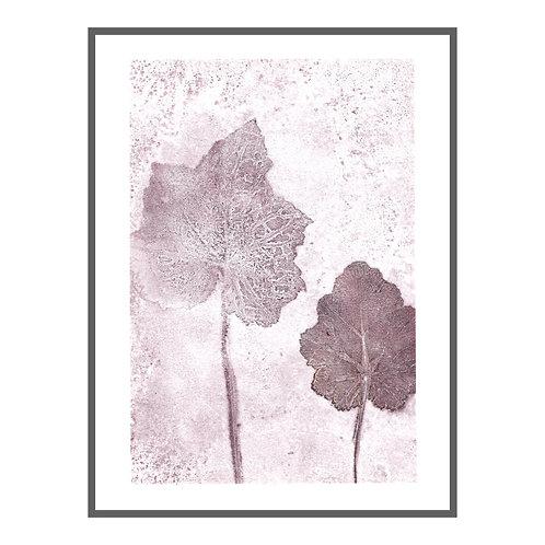 Alumroot leaf 'loganberry'
