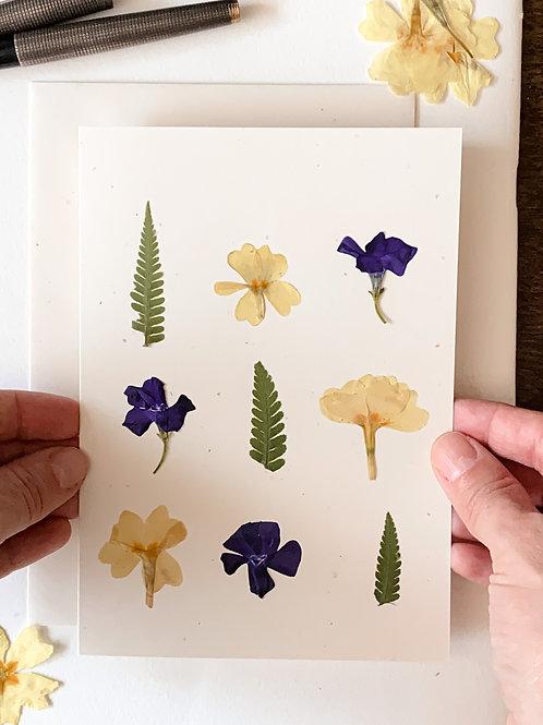 Herbarium Card VII