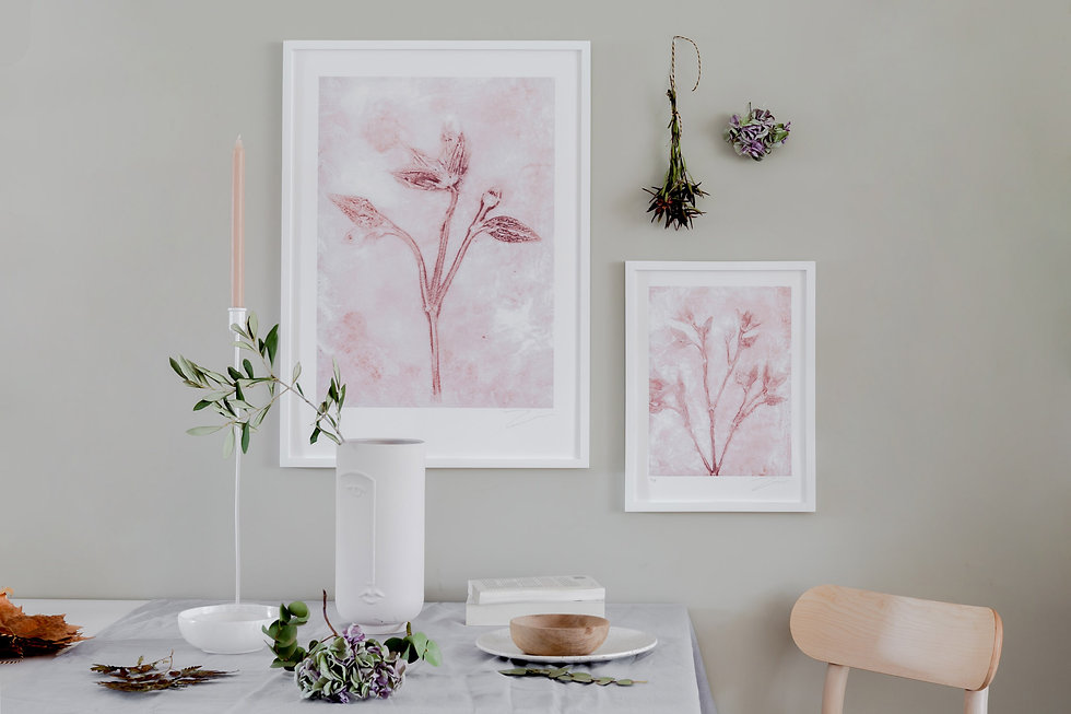 Clematis limited edition prints