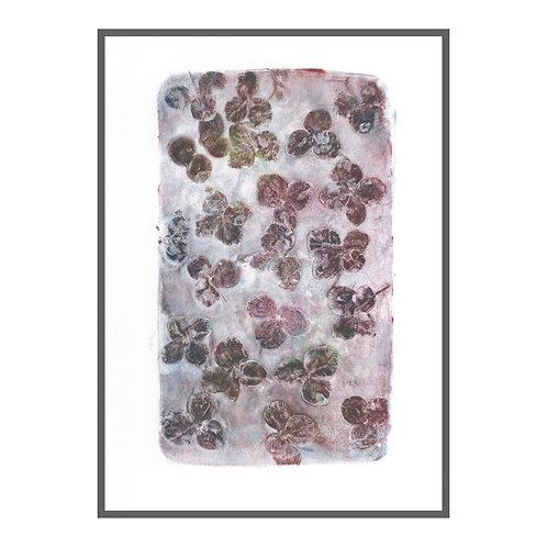 Hydrangea petals I 'damson purple'