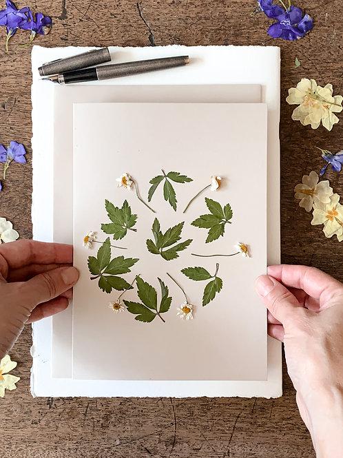 Herbarium Card III