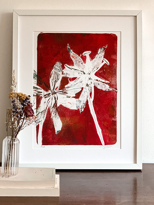 Gloriosa IIN 'scarlet red' with frame