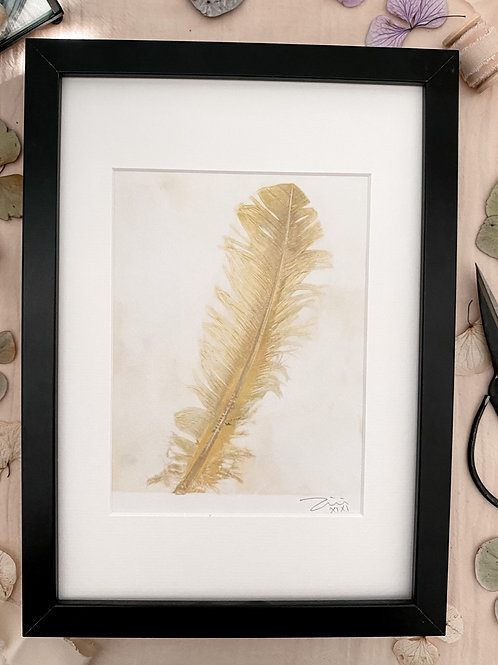 Feather 'acid yellow' with frame