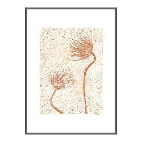 "Pasque Blume II ""Ocker"""