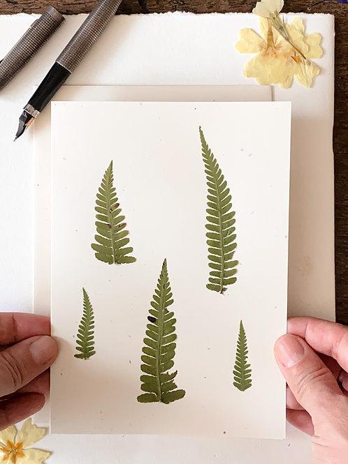 Herbarium Cards Workshop | Canton of Zug