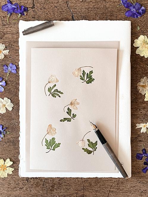 Herbarium Card I