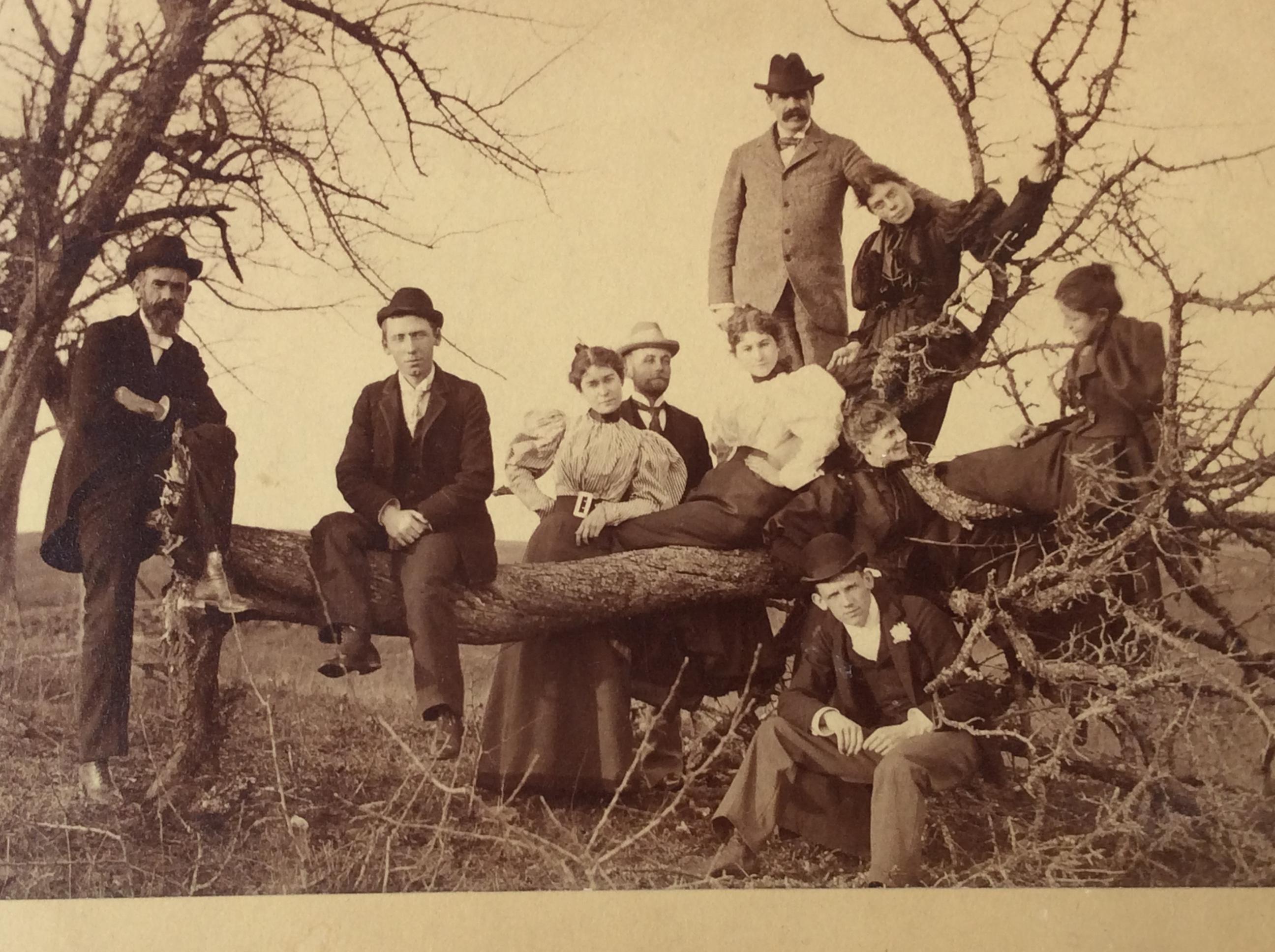 Browns on Dead Tree Circleville.JPG