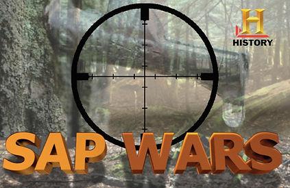 Sap Wars History.jpg