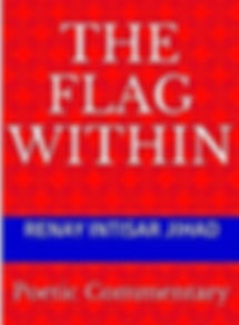 WIX THE FLAG WITHIN COVER2_edited.jpg