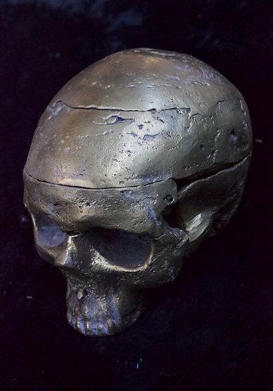 Bronze Cast Skull