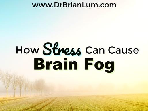 How Stress Causes Brain Fog