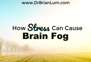 a foggy field. text overlay that says how stress can cause brain fog