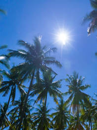 The-palms-agency-travel-photography-42.j