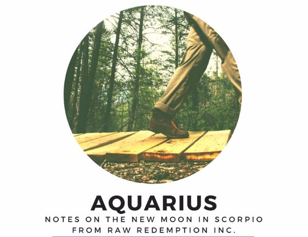 30 Min Astrology Session