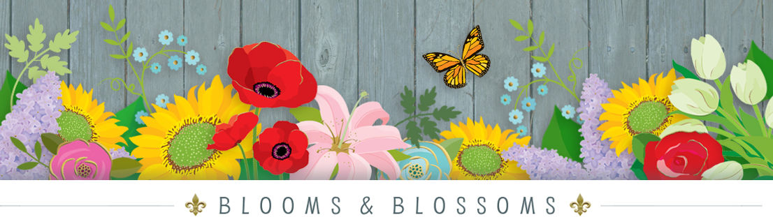 Blooms & Blossoms