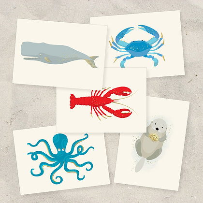 Sea Creatures Correspondence Set