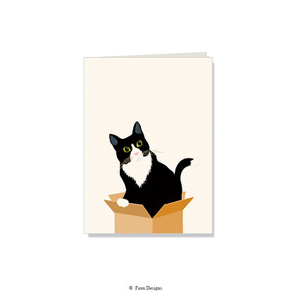 Cat in the Box Folded Note