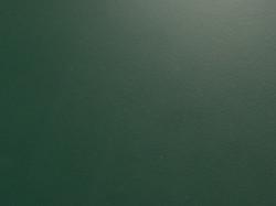 zielony butelkowy 6005 super mat