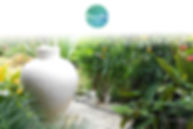 redoute-paradise-banner-02.jpg