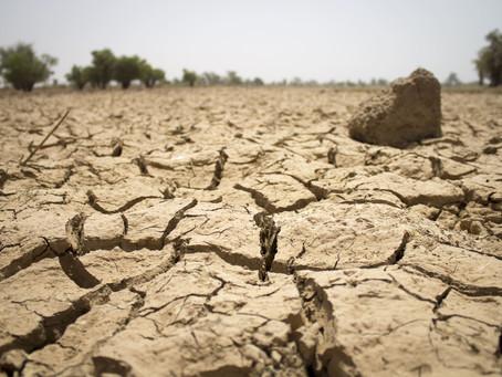 17 juin: Journée mondiale de lutte contre la désertification et la sécheresse