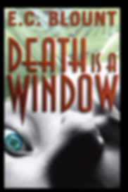 Book Cover: Murder Mystery Novel. Student Nurse Murders In Palm Beach.